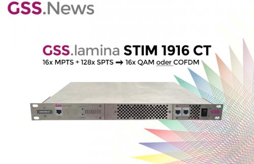 GSS-lamina_STIM1916CT.png