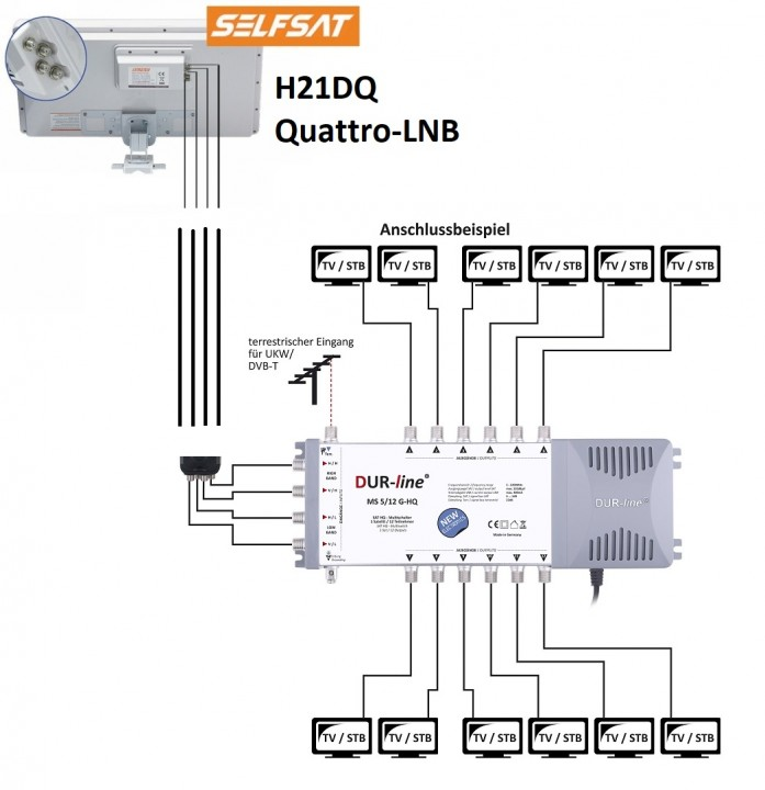 SelfsatH21DQ_Quattro_MS12.jpg